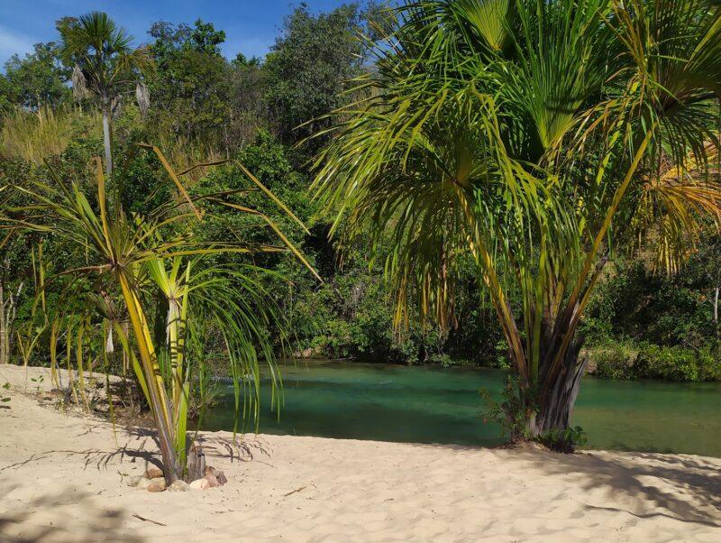 Praia do Pequizeiro: tranquilidade em meio à natureza - Foto: Seleucia Fontes