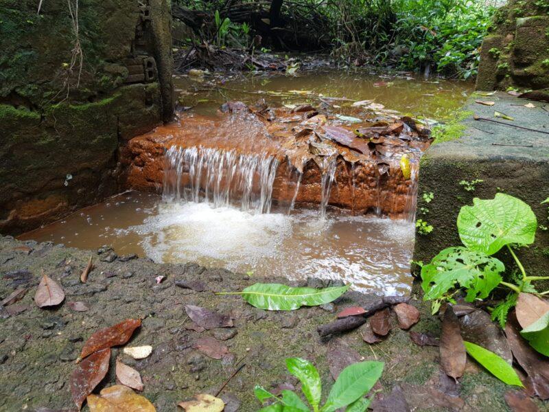 As belezas naturais que o Itapiracô reserva aos visitantes - Foto: Yndara Vasques
