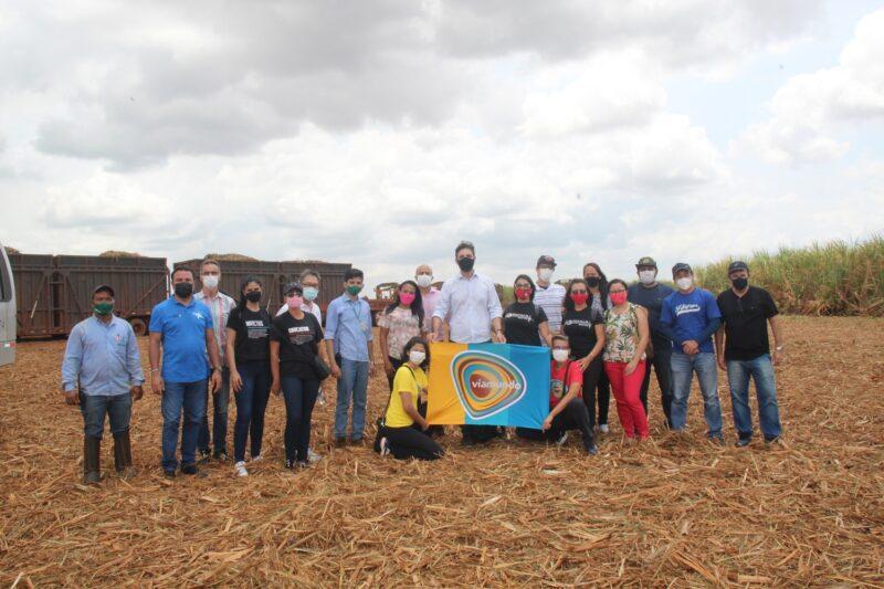 Fazenda Agro Serra em São Raimundo das Mangabeiras - corte da cana – Foto: Franci Monteles